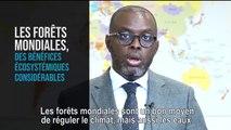 Écologie, développement et mobilité durables - Avis budgétaire  - Mercredi 23 octobre 2019