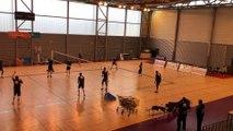 Volley-ball - Les joueurs du Tours VB à l'entraînement au gymnase Viviani d'Épinal