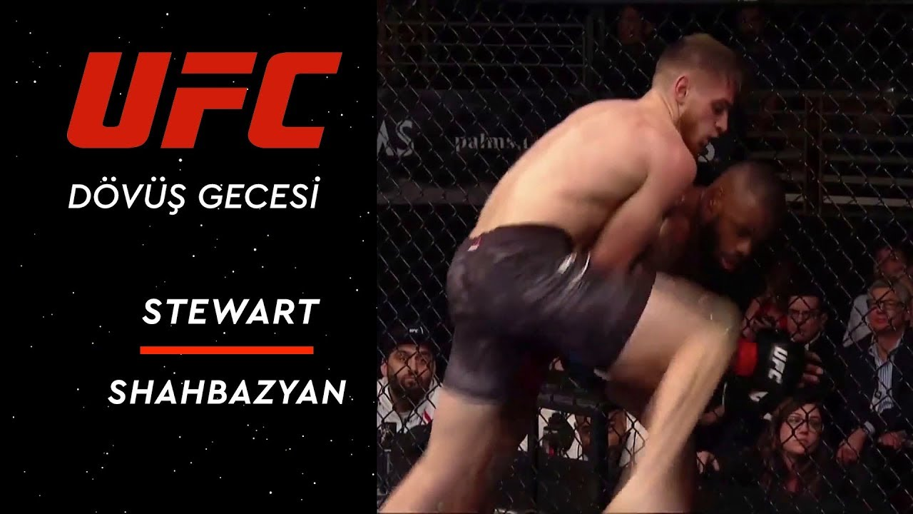 The Ultimate Fighter Season 28 Finale | Stewart vs Shahbazyan