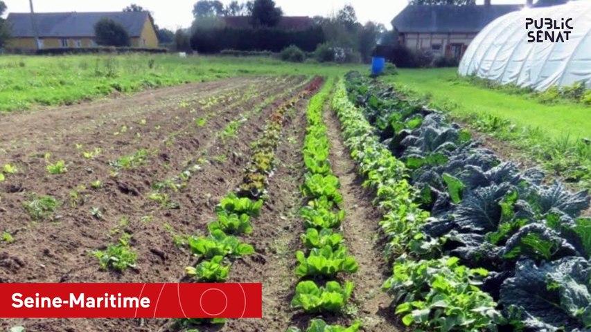 Seine-Maritime les conséquences de l'incendie de Lubrizol pour les agriculteurs