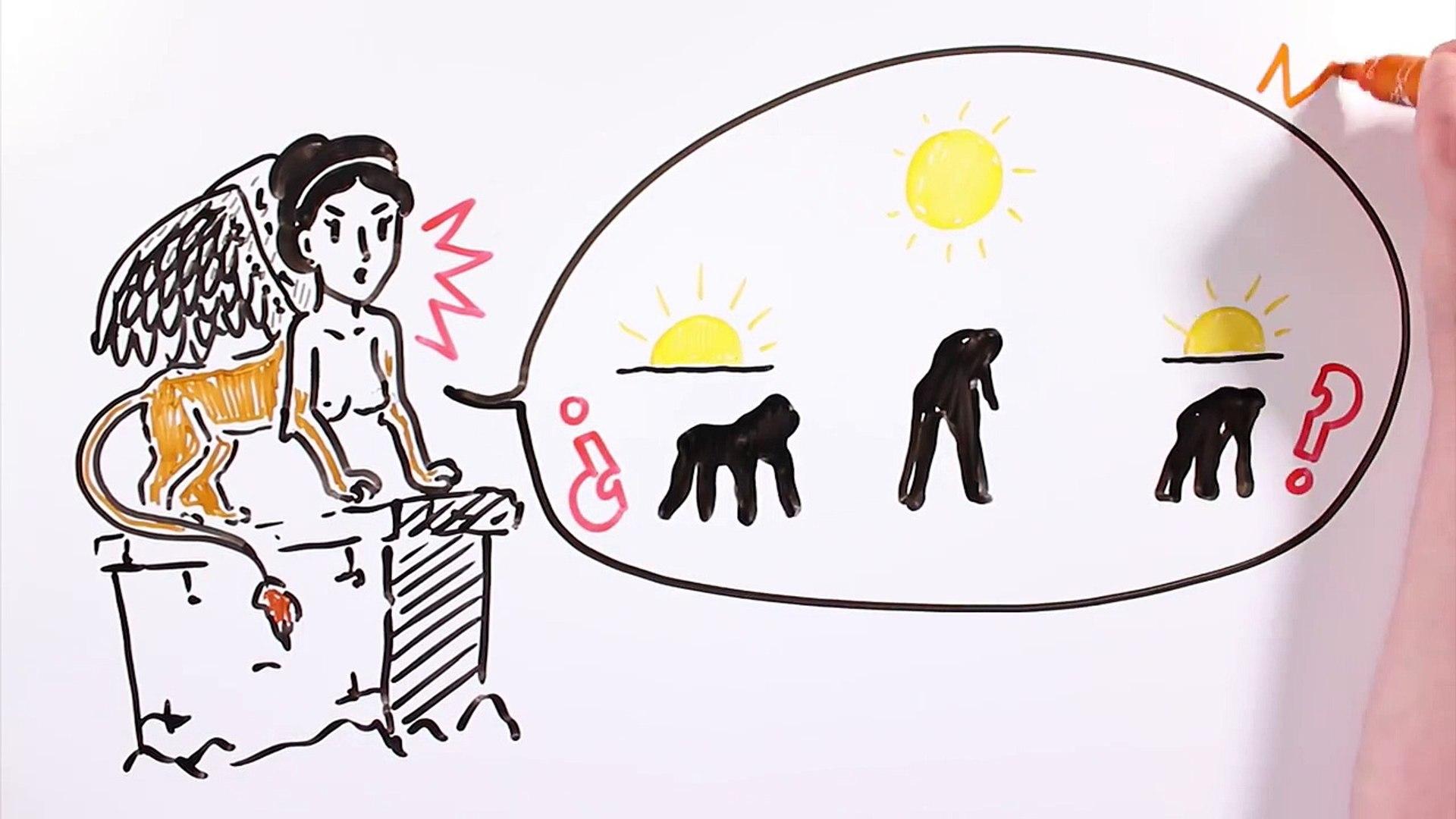 ACERTIJOS IMPOSIBLES con TikTak Draw   Draw My Life #tiktakquiz