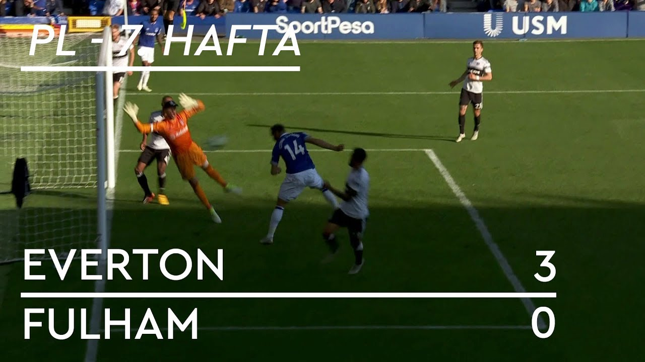Everton - Fulham (3-0) - Maç Özeti - Premier League 2018/19