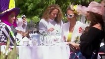 The Real Housewives of Orange County - S14E13 - Spilling Tea and Throwing Shade - October 29, 2019 || The Real Housewives of Orange County (29/10/2019)