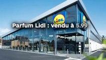 Parfum Lidl : vendu à 5.99 euros, il sent aussi bon qu'un parfum de luxe !
