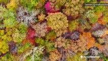 Stunning mid-fall colors across Kentucky