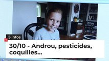 Androu, pesticides, coquilles... Cinq infos bretonnes du 30 octobre