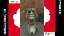 Peidos engraçados do gato tom: Peido maníaco, te persegue em todos os lugares! [Frases e Poemas]