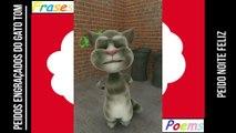 Peidos engraçados do gato tom: Peido noite feliz, sai no dia de Natal! [Frases e Poemas]