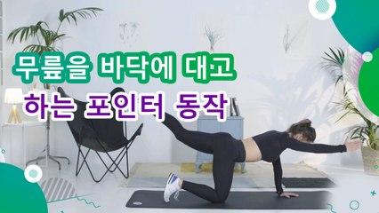 무릎을 바닥에 대고 하는 포인터 동작 - 운동하는 사람들