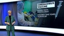 Explainer: Battle against Coronavirus