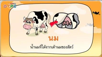 สื่อการเรียนการสอน มาตราตัวสะกดแม่ กม ป.2 ภาษาไทย