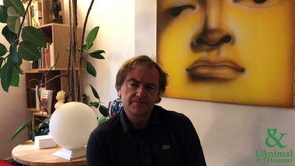 Interview 7 de Didier Van Cauwelaert : La bienveillance des dauphins