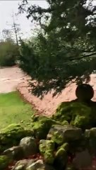 VIDEO: Storm Ciara hits Fountains Abbey and Studley Royal World Heritage Site