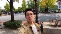 [김진이 간다]악취 때문에 미움받는 착한 은행나무