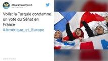 Interdiction du voile pendant les sorties scolaires: la Turquie condamne le vote du Sénat en France