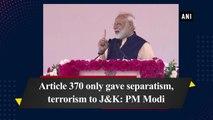 Article 370 only gave separatism, terrorism to J&K: PM Narendra Modi
