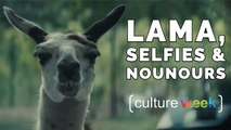 Culture Week by Culture Pub - Lama, Selfies et Nounours
