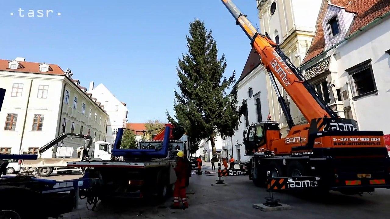 BRATISLAVA: Na Hlavnom námestí osadili vianočný stromček