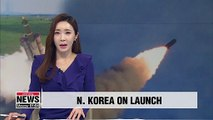 Launches involved N. Korea's newly-developed multiple rocket launcher system: State media