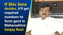 If Shiv Sena decides, it'll get required numbers to form govt in Maharashtra: Sanjay Raut