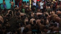 Faecal festival - cow dung fight brings villagers 'good health'
