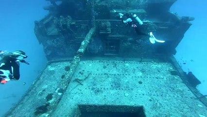 Dive Oahu - 2020 Readers Choice Winner