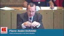 Le Préfet, Pierre-André Durand, audition Lubrizol à la plénière de la Région Normandie 14-10-2019