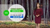 [날씨] 내일 오전 미세먼지↑...흐리고 곳곳 비 소식 / YTN