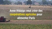Anne Hidalgo veut créer des coopératives agricoles pour alimenter Paris