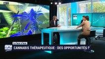Le duel: Yves Christol face à Lorraine Goumot - 03/11