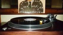 Ferdi Özbeğen - Bir Şarkımız Vardı  (Plak kayıt)