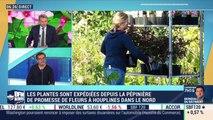 Promesse de Fleurs vient de racheter Jardin du Pic Vert pour accélérer sa croissance, Pascal Griot - 04/11