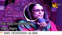 Hasay Ore Me Olgaedo | Wagma |  Pashto Song