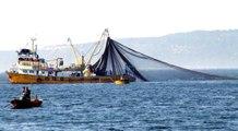 Su Ürünleri Kanunu'nda değişiklik yasalaştı: Yönetmeliğe aykırı balık avlanması durumunda uygulanan para cezaları artırıldı