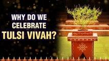Why do We Celebrate Tulsi Vivah ? | तुलसी विवाह कथा | Story of Tulsi Vivah | Tulsi Vivah Katha