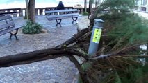Storm Amelie pummels France with high winds and heavy rains