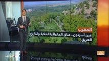 مدار الأخبار - الظهيرة - 04/11/2019