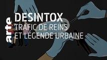 Trafic de reins et légende urbaine | 04/11/2019 | Désintox | ARTE