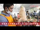 沈雅财:承担70万总开销  紫云阁装义肢●逾200人申请