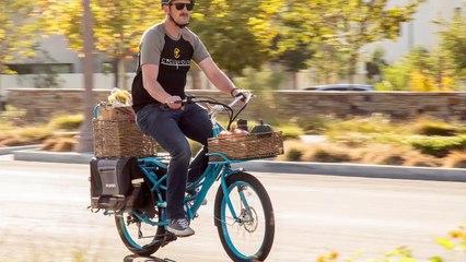 Pedego Stretch Electric Cargo Bike Review