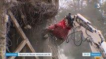 Normandie : quand un fleuve retrouve sa vie naturelle