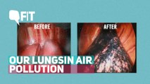 How Have Our Lungs Changed With Air Pollution?