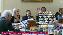 [QUESTIONS SUR] La proposition de loi visant  agir contre les violences faites au sein de la famille
