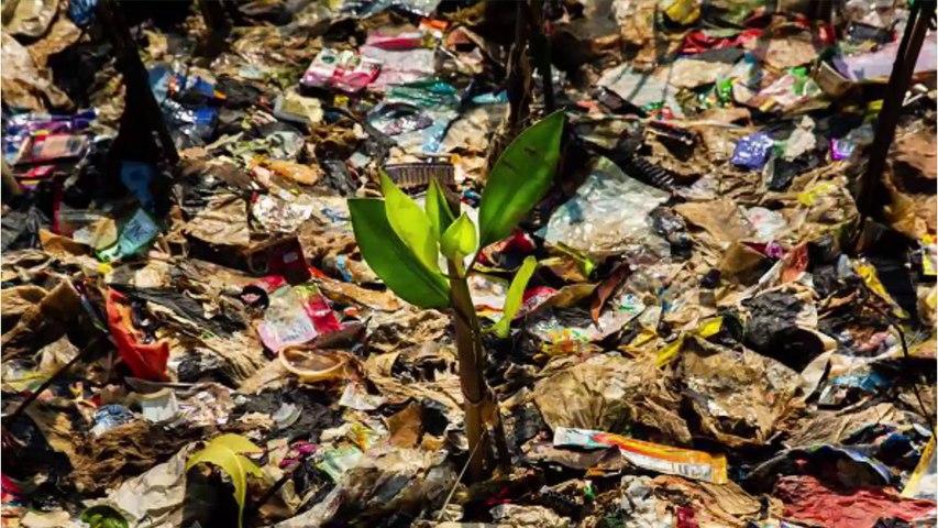 Coca-Cola es la marca más contaminante del mundo en residuos plásticos
