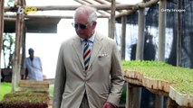 Prince Charles' Aston Martin Runs On Fuel Made From Wine And Cheese