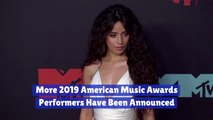 Who Is Performing At The 2019 American Music Awards