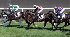 Son dakika: Türkiye Varlık Fonu, at yarışları ve bahisleri hizmet alımı için süreç başladı