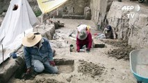 العثور على عظام 14 ماموث في المكسيك
