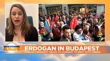Turkey's Erdoğan booed by crowd in Budapest over Syria military incursion