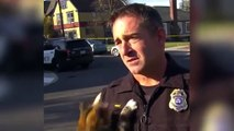 Gato ataca a un policía en plena entrevista